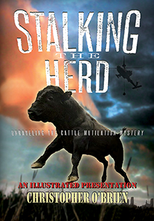 STALKING THE HERD DVD